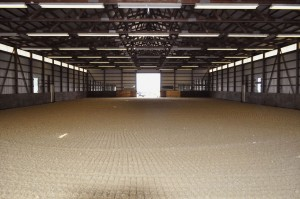 The completed indoor arena. It's amazing!