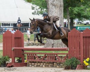 Horse and Rider from Our Hunter Jumper Show Stable in Northern Virginia