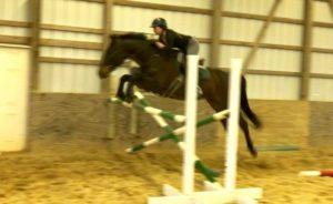 Duke jumping Large Fence