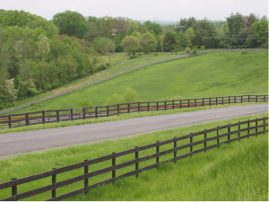 Fields Around the Clairvaux Horse Boarding Facility in Northern Virginia