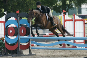Hunter Jumper Riding Lessons Graduate from Clairvaux - Alison Anderson and Zenith competing in the Culpeper Equitation Classic at a HITS Culpeper Horse Show