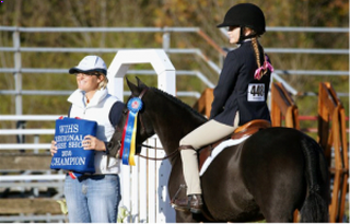 Clairvaux Training Results at the Washington Regional Horse Show